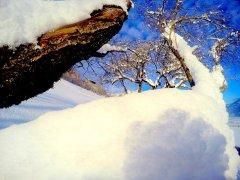 bergchalet-alpenrose-wachterhof00084.jpg